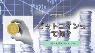 仮想通貨入門 ビットコイン 購入 保管